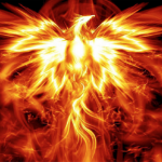 The Phoenix: Ancient Myth, Personal Journey